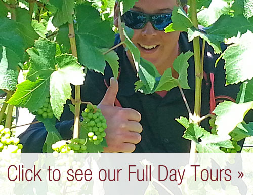 Nelson Full Day Tours